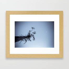 Chain of Ponds Framed Art Print