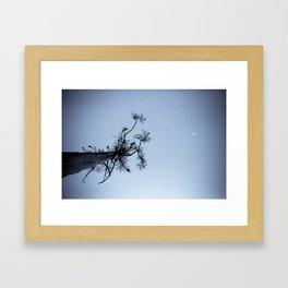 Chain of Ponds Framed Art Print