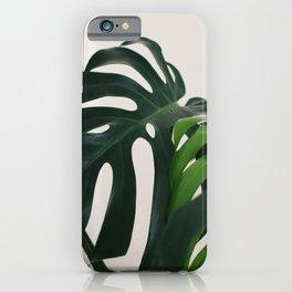 Minimalist Mid Century Scandinavian Style House Plant Mostera Green Leaf Zen Photo iPhone Case