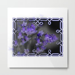 Bluebells in Celtic knot frame Metal Print