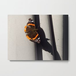Butterfly shadow Metal Print