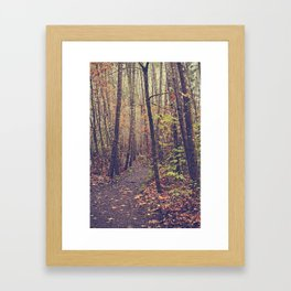 Fall Trail Framed Art Print