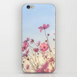 Wild sunflowers iPhone Skin