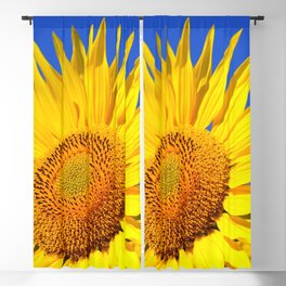 Sun Flower Blackout Curtain