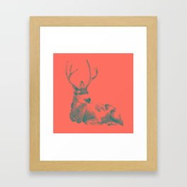 Buck in Coral Framed Art Print