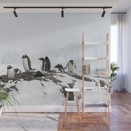 Families of Gentoo Penguins near Vernadsky Station Antarctica Wall Mural