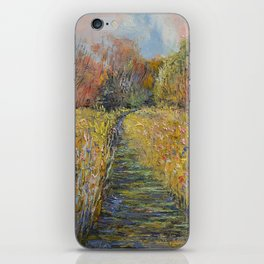 Path in the Meadow iPhone Skin