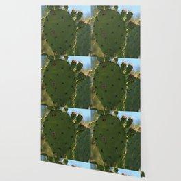 Bigfoot Cacti Wallpaper