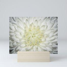 Delicate Flower Mini Art Print