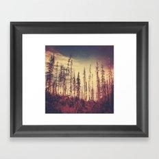 Burnt Forest IV Framed Art Print
