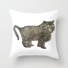 Cute Furry Cat Throw Pillow