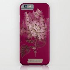 HYDRANGEA 2 Slim Case iPhone 6s