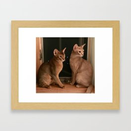 Chaco and Kuma Framed Art Print