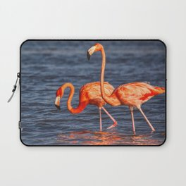 Two Pink Flamingos in Mexico Laptop Sleeve