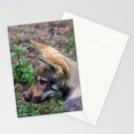 Canis Lupus Lupus II Stationery Cards