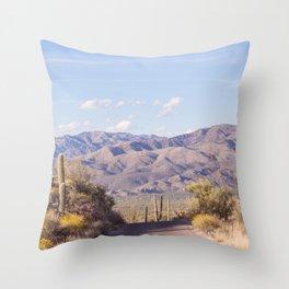 Down Desert Roads, IV Throw Pillow