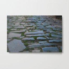 Cobblestones And Grass Metal Print