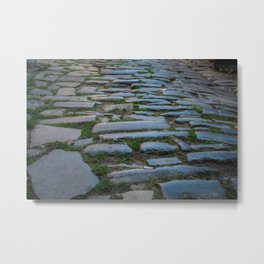 Cobblestones And Grass Metal Print