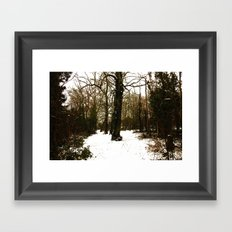 Snowy forest Framed Art Print