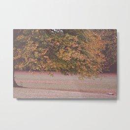 Park Tree Metal Print