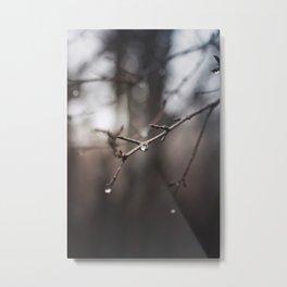 The Rain Leaves Behind Jewels Metal Print