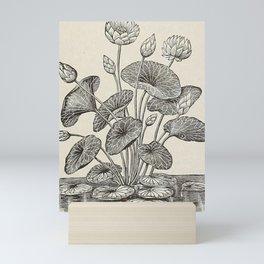 Water Lillies Mini Art Print