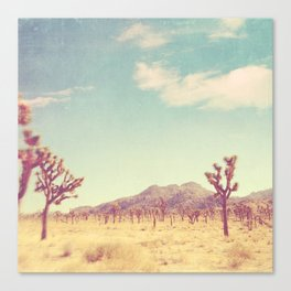 Joshua Tree photograph, desert print, No. 189 Canvas Print