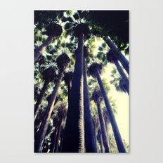 Palm Tree Canvas Print
