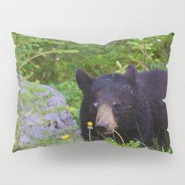 Black bear munches on some dandelions in Jasper National Park Pillow Sham