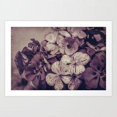 Geraniums -- Monochrome Floral in Aubergine Art Print
