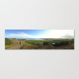 Coastline Panorama Canvas Print