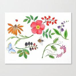 Maine's Wayside Plants Canvas Print
