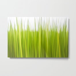 Water Reed Abstract Metal Print