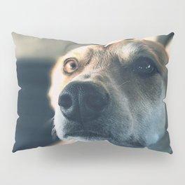 Cute puppy by Jeremiah Higgins Pillow Sham