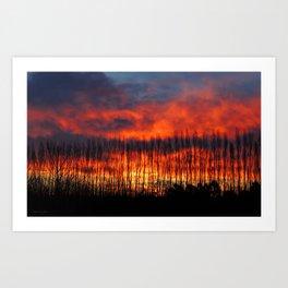 Kaiapoi sunset Art Print