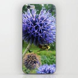 Globe Thistle Nectar iPhone Skin