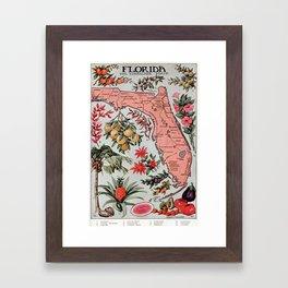 Vintage Map of Florida (1917) Framed Art Print