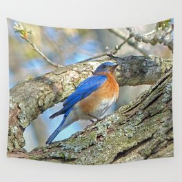 Bluebird in Tree Wall Tapestry