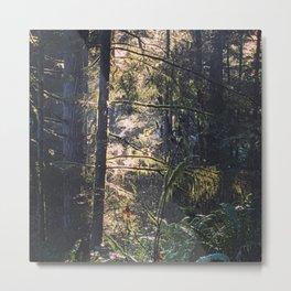 Forest Jewels Metal Print