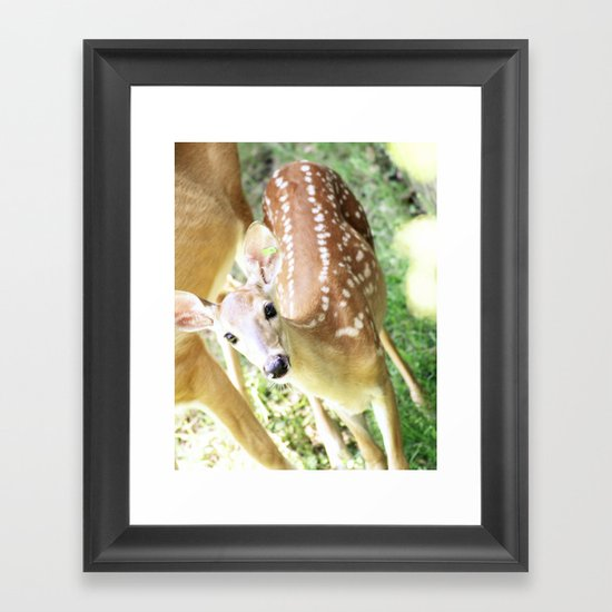 Spotted at the Zoo Framed Art Print