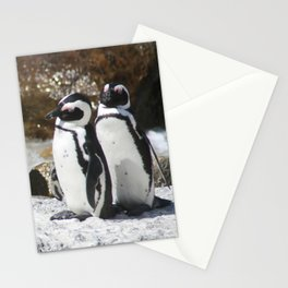 3 South African Penguins Stationery Cards