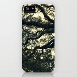 Savannah Live Oaks iPhone Case