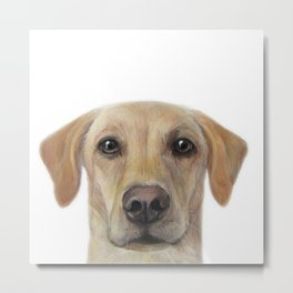 Rescue Dog series, Labrador mix, Chai Metal Print