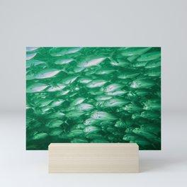 school of jack fish Mini Art Print