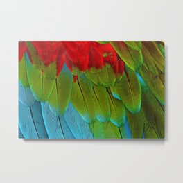 Catalina Macaw Feathers Metal Print