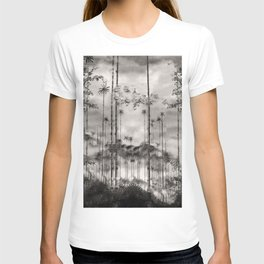 Kidnapped .....Alone in this stunning capsulle T-shirt