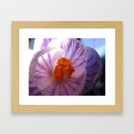 Little flower Framed Art Print