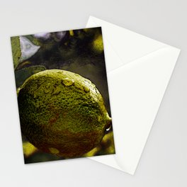 Bright Lemon Illustration Stationery Cards