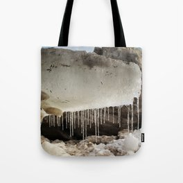 T Rex in Ice Tote Bag