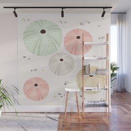 Sea Urchins Wall Mural